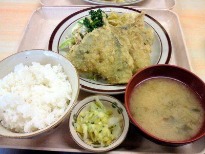 晨耕の日替わり定食(アジフライと揚げシューマイ)